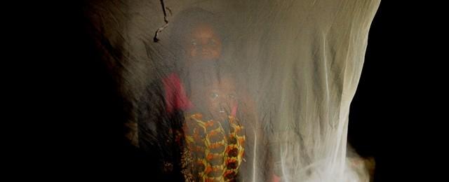 Invertir en el futuro. Vencer la malaria Image