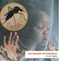 Día Mundial de la Malaria : La OMS declara a Europa libre de Malaria Image